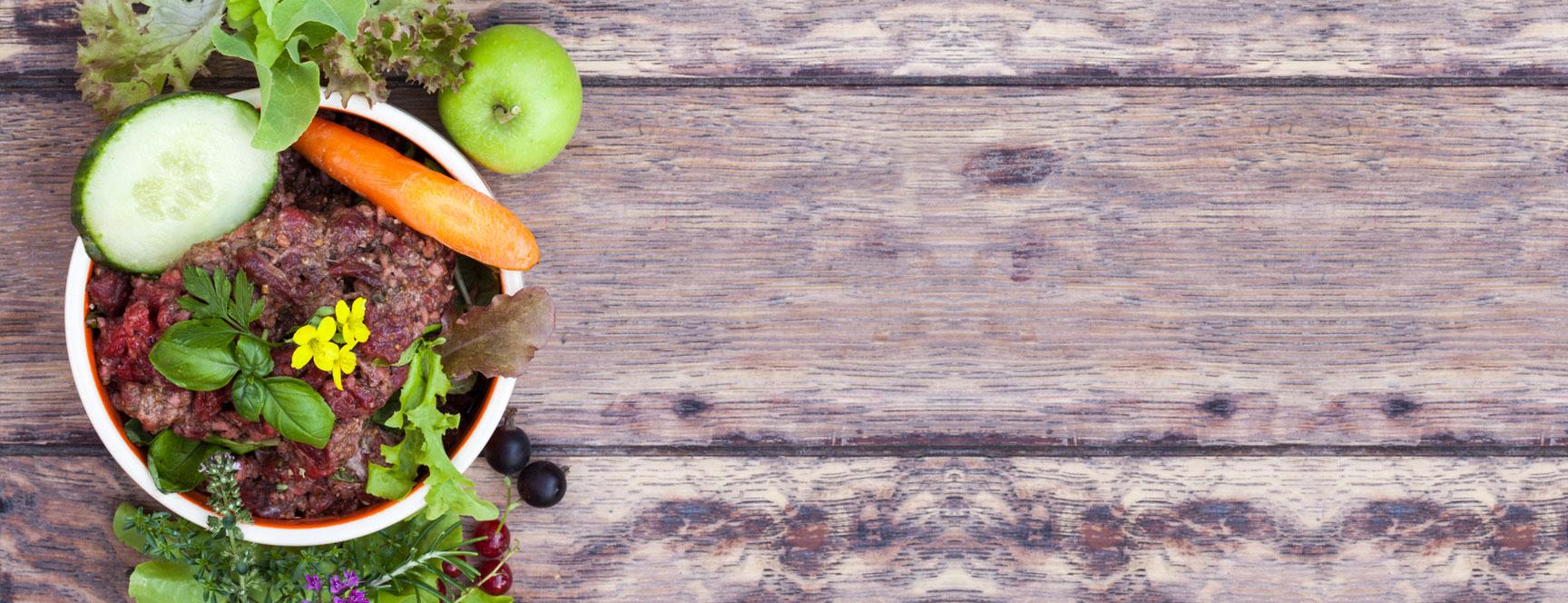 Ernährungs- und medizinische Beratung